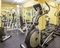 La Quinta Inn and Suites Philadelphia Airport - Get in a workout before you go with everything from cardio to weight training.
