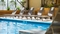 DoubleTree by Hilton Newark Airport - Splash with friends and family in the indoor pool.